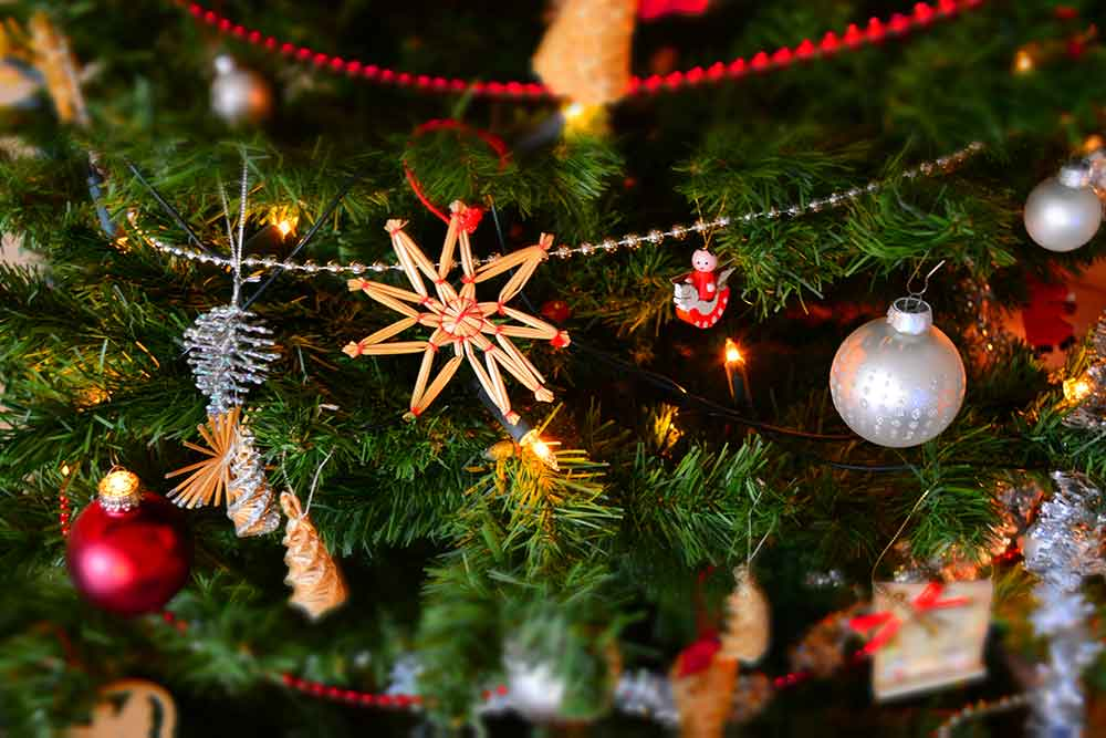 Deux bûches de Noël gourmandes pour vos fêtes de fin d'année