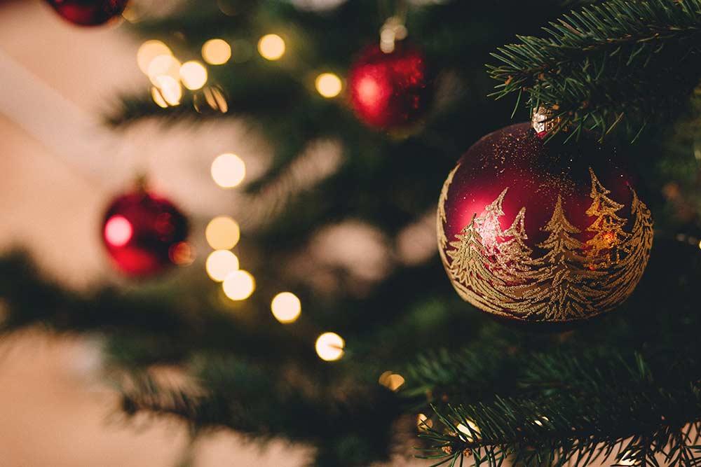 Sublimez vos fêtes de fin d'année avec les bûches du Regalou
